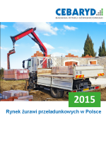 Raport: Rynek żurawi przeładunkowych w Polsce 2015