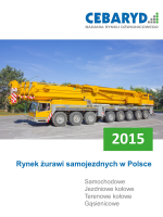 Raport: Rynek żurawi samojezdnych w Polsce 2015